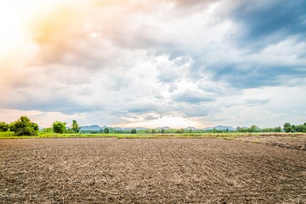 terra-comprar-lote-de-terreno